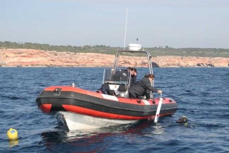 Instalación de dispositivos electrónicos sumergibles encargados de registrar el movimiento de los delfines